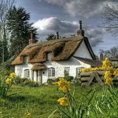 Love the thatched roof~charming