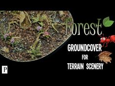 How To Make Forest Groundcover For Terrain Scenery - YouTube