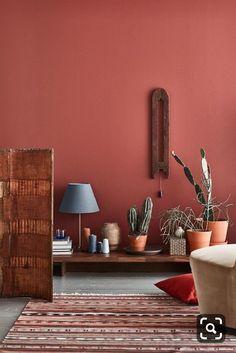 20 Cool Small Cactus Ideas For Interior Home Design Room Interior Colour, Living Room Interior, Home Interior, Interior Design Living Room, Living Room Red, Living Room Color Schemes, Small Living Rooms, Living Room Decor, Color Terracota