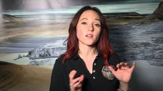 New Horizons At Pluto: New Horizons is Going Dark for Flyby Solar System, Dark, News, Youtube, Sistema Solar, Solar System Crafts, Youtubers, Youtube Movies