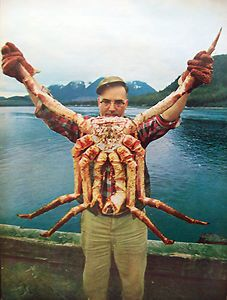 Vintage Alaskan King Crab Fisherman Holding Record Crab Photo | eBay #zodiac #astrology #cancer #crab