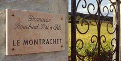 Frédéric Durand-Bazin vous emmène au coeur de la Bourgogne à la découverte de la maison Bouchard Père & Fils http://avis-vin.lefigaro.fr/connaitre-deguster/o31824-un-verre-avec-la-maison-bouchard-pere-fils