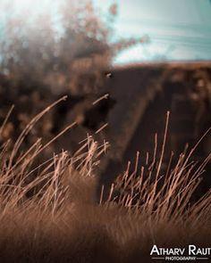 Cb background download 2019 Blur Image Background, Desktop Background Pictures, Blur Background Photography, Photo Background Editor, Studio Background Images, Light Background Images, Sunset Background, Picsart Background, Pics Art