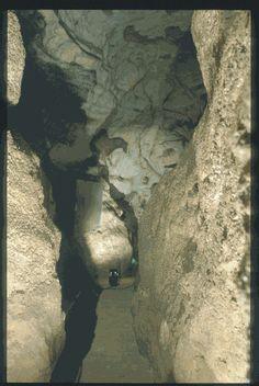 MONTIGNAC (Dordogne, 24). Grotte de Lascaux. Bilan des études. Récapitulation. Légende : Diverticule axial, paroi gauche : entrée de la galerie. On peut apercevoir au fond un cheval rouge et noir de profil droit.