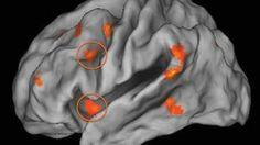 Crescere poveri fa male al cervello | Motherboard