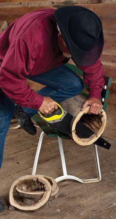 DIY wood stump slice frames