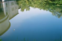 #water #eau #bassin #lac #lake #blue #bleu #university #nature #green #bois #forest #forêt