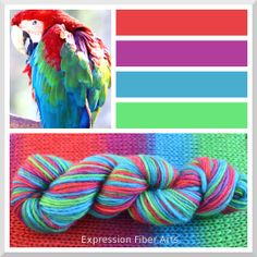 "MACAW - Color Shifting ""Spectrum"" Wool Worsted Wt Yarn - 175 yd/100 g - Expression Fiber Arts"