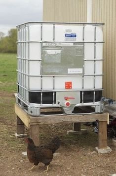 Off Grid Water :: Rain Barrel System - Resilient Knitter Off Grid, Rain Barrel System, Water Barrel, Water Collection, Rainwater Harvesting, Drip Irrigation, Fish Ponds, Emergency Preparedness, Emergency Supplies