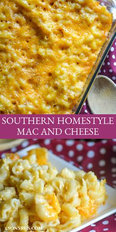 Creamy baked macaroni just like Grandma used to make, this Southern Homestyle Mac And Cheese will bring a taste of 'home' to any meal. Whether it's a quick weeknight dinner, or a dish to share with family and friends- this is a must have side dish. Southern Macaroni And Cheese, Best Macaroni And Cheese, Making Mac And Cheese, Macaroni Cheese Recipes, Creamy Mac And Cheese, Mac And Cheese Homemade, Baked Macaroni, Wife Saver Mac And Cheese Recipe, Baked Mac And Cheese Recipe Paula Deen