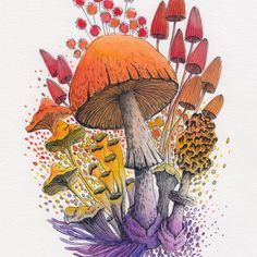 Mushroom Paint, Mushroom Drawing, Art Inspo, Painting Inspiration, Watercolor And Ink, Watercolor Paintings, Art Mignon, Art Et Illustration, Psychedelic Art