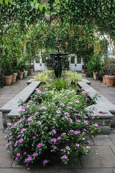 22 Best Bronx Botanical Garden Images Botanical Gardens 400 x 300