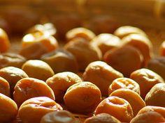 Informazioni  nel  web: Prugne umeboshi, proprietà di un frutto misterioso...