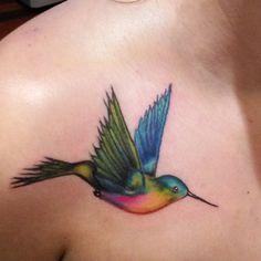 Colorful Hummingbird by Eddie