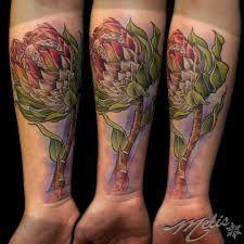 protea tattoo - Google-haku