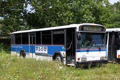 Westmoreland Transit Gillig
