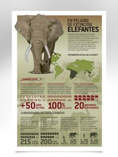 Infografía revista GEO.