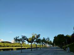 """Parque Eduardo Ⅶ"" Lispoa Portugal (Luglio)"
