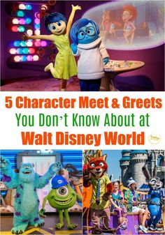 5 Character Meet & Greets You Don't Know About at Walt Disney World Everyone knows where to find Mickey and Minnie. or the princesses. But what about these lesser known character meet and greet's at Walt Disney World? Disney Vacation Planning, Walt Disney World Vacations, Disney Parks, Disney Bound, Orlando Vacation, Disney Travel, Disney Cruise, Disney World Tips And Tricks, Disney Tips