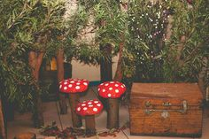 Alice in Wonderland #decor