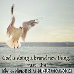 God is doing a brand new thing. Trust Him!