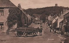 Somerset, Dunster, Horses Pulling Felled Trees