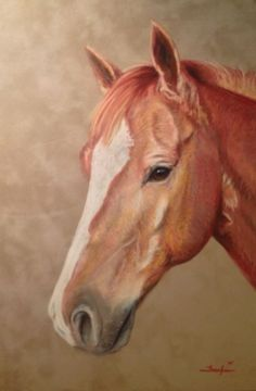 Custom 11 x 14 Painting of Your Horse in Soft Pastel by Frankie Paquin | eBay