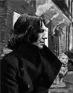 Everything on Severus Snape Severus Snape Always, Snape And Hermione, Professor Severus Snape, Harry Potter Severus Snape, Severus Rogue, Harry James Potter, Harry Potter Film, Harry Potter Universal, Harry Potter Characters