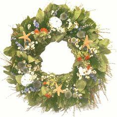 Gulf Shore Seashell Wreath - 22 in Seashell Wreath, Nautical Wreath, Floral Wreath, Dried Flower Wreaths, Dried Flowers, Tree Fern, How To Make Wreaths, Coastal Decor, Door Wreaths