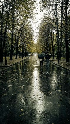 a walk in the rain! Rainy Dayz, Rainy Mood, Rainy Night, Walking In The Rain, Singing In The Rain, Rain And Thunderstorms, Rain Wallpapers, Iphone Wallpapers, I Love Rain
