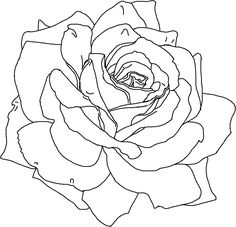 Download and Print rose flower coloring pages printable