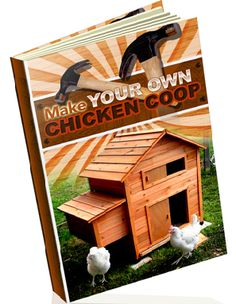 Types of wood for chicken coops