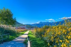 Read about riding the rail trail in Costa Brava, Spain >> Great photos