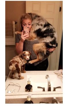 7 Surprising Reasons You Should Sleep With Your Dog Every Night – Pets Owners - Baby Animals Super Cute Animals, Cute Funny Animals, Cute Baby Animals, Animals And Pets, Cute Dog Pictures, Cute Animal Photos, Australian Shepherds, Pet Dogs, Dogs And Puppies