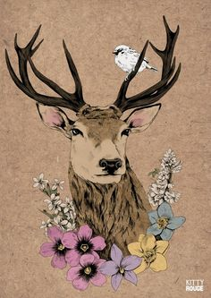 illustration, deer, flowers, bird, colour, design
