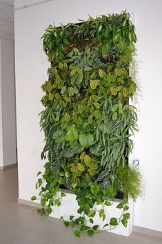 DIY Vertical Garden Design Ideas For Your Home Ladder upright garden . the best Do It Yourself project for anybody with a small yard but that still wishes to garden.Vertical horticulture isn't really just efficient its likewise beautifulL Vertical Plant Wall, Vertical Garden Design, Plant Wall Diy, Vertical Planter, Vertical Garden Plants, Diy Wall, Jardim Vertical Diy, Jardin Vertical Artificial, Indoor Vertical Gardens