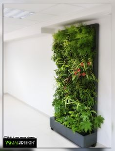 Jardin green inside pinterest nature for Mur vegetal suspendu