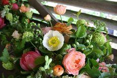 Peony, garden roses, poppies, delphenium, vibernium, queen annes lace