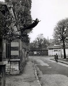Yves Klein (French, 1928-1962) Photographed by Harry Shunk (German, 1924-2006) and János (Jean) Kender (Hungarian, 1937-2009) Leap into the void. 1960