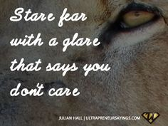 Stare-fear-with-a-glare-that-says-you-dont-care.jpg (640×480)
