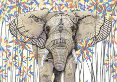 Elephant // Endangered Animals by Sandra Dieckmann From Elephant Illustration, Illustration Art, Sandra Dieckmann, Elefante Hindu, Elephant Love, Elephant Artwork, Elephant Stuff, African Elephant, Illustrations