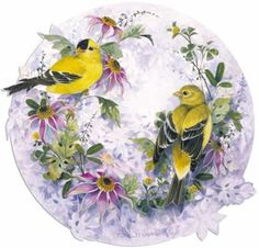 kuşlar-1.JPG (500×479)