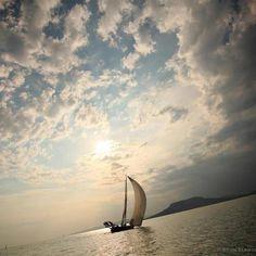 Sailing around Badacsony. #sailing, #lake, #badacsony, #balaton