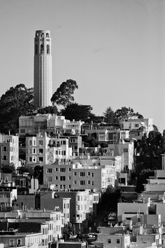 On top of Telegraph Hill, on the east side of San Francisco, sits #Coit Tower. Coit Tower may be accessed through the North Beach area. From the top, you have a full 360-degree view of #SanFrancisco. #scrubs.com