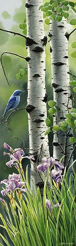 White Birches & a Blue Bird