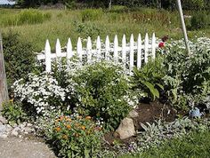 Providence Acres Farm: A White Flower Bed