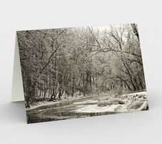 Fine Art Nature Photography for you and your fashionable home.  My stationery cards are seeking a card collectors shelf near you! These printed on the outside, blank on the inside cards are the perfect way to say pretty much anything fr... #christmasgift #inlightimagery #shopsmall #shopart #naturephotography #fineartgift #etsy