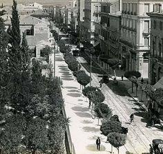 1900 ~ Η Σταδίου με τις ακακίες στο μέσον.