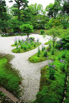 京都 廬山寺 源氏庭 桔梗 苔 Japan,Kyoto,Rozan-ji temple,bellflower,moss