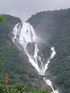 Dudhsagar Falls is a tiered waterfall located on the Mandovi River in the Indian state of Goa on Goa's border with Karnataka state. It is four-tiered. It is 60 km from Panaji city by road and 46 km from Madgaon railway junction by train